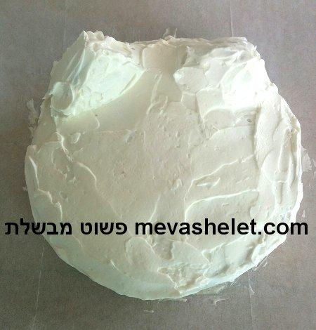 עוגת יום הולדת בצורת פרצוף של חתול cat face birthday cake